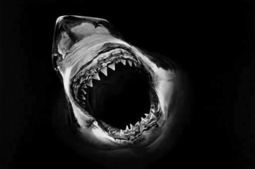 shark-robert-longo-1-610x407