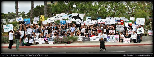 2014 Empty the Tanks: Sea World San Diego