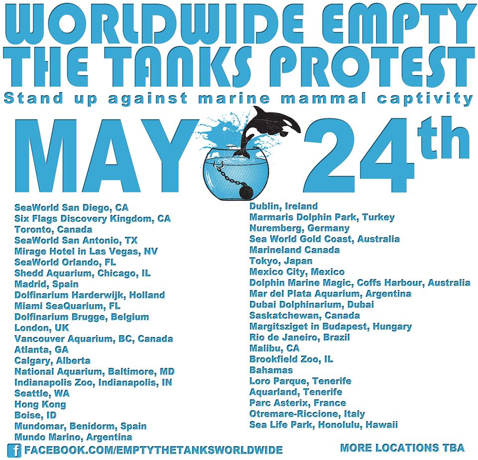 Day 330 5/21/14: Empty the Tanks: Worldwide Protests for Captive Orcas (& Others)